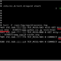 https通信で暗号化したアクセスはURLパスも見えないのか?Proxyサーバのログを確認してみた